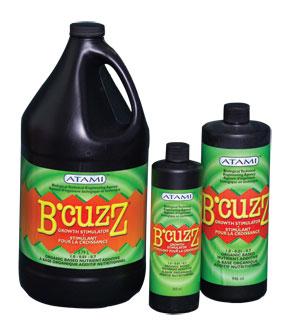 BZG12