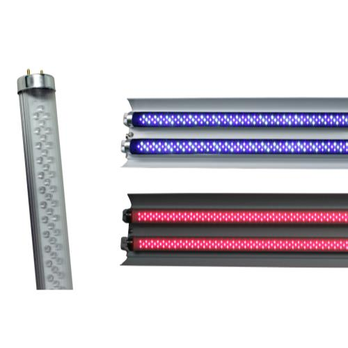 AgroLED T8 LED Tube White/Blue