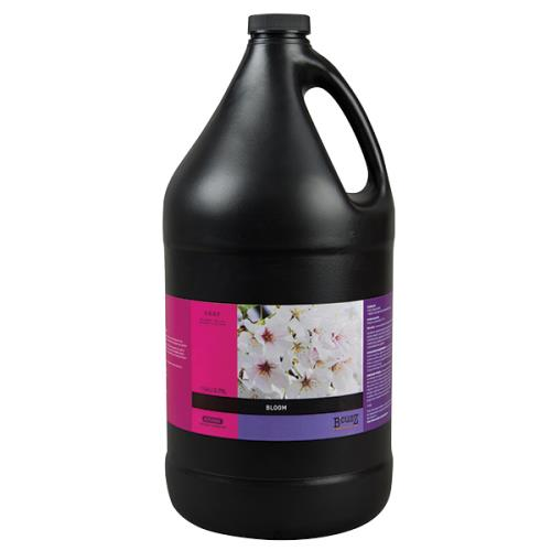 BCuzz Bloom 12 oz(12/Cs)