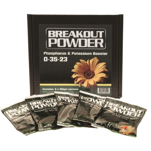 Aptus Breakout Powder 100 gm (5/Cs)