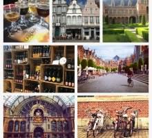 Bedooin en Flandes: nuestras impresiones