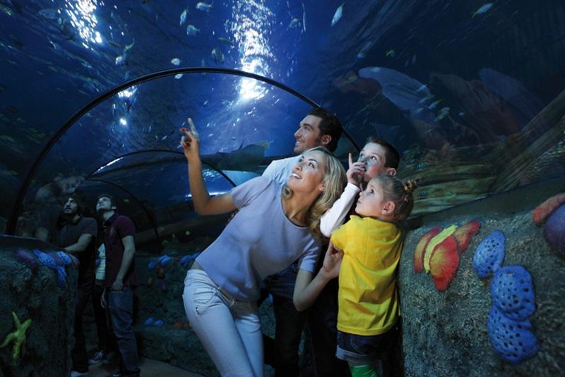 Familia visitando el acuario Gardaland