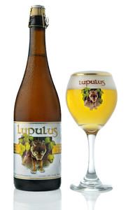 Lupulus Blond beer, Ardennes Triple