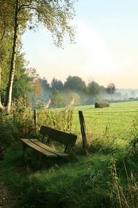 Nature and Wildlife Belgium