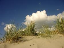 Geography of Belgium, Belgium, Belgian Landscape, Belgian coast, sand dunes