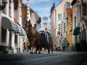 Bruges horse-drawn carriages