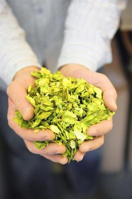Belgian Beer, Belgium, De Ranke, Kriek De Ranke