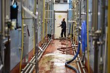 Brouwerij Westmalle, New Brewery, Cleaning