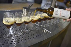 Jack the R'IPA, Brewery De Hoorn - Palm Belgian Craft Brewers