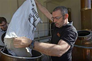 Brewery De Hoorn - Palm Belgian Craft Brewers