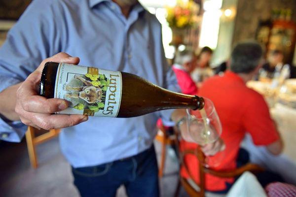 Lupulus - Belgian beer and food pairing