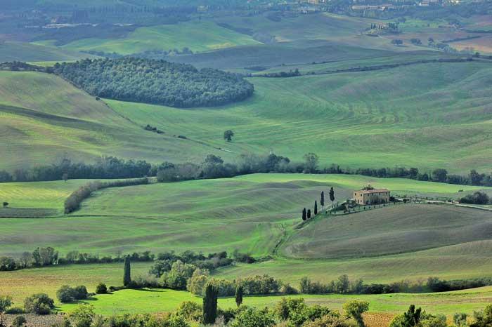 Green Landscape, Toscana, Italy