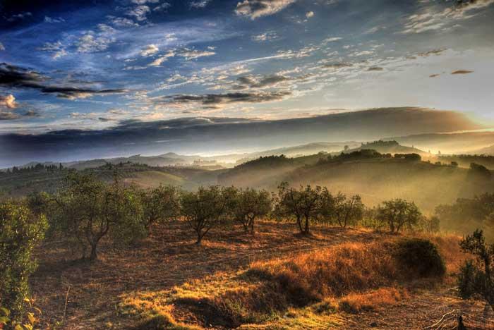 Certaldo, Tuscan Countryside