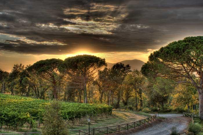 Unspoiled Montopoli in Val d'Arno