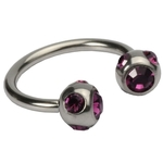 16 GA Purple Five Gem Circular Barbell image