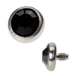 Dermal Top - 4mm Black image