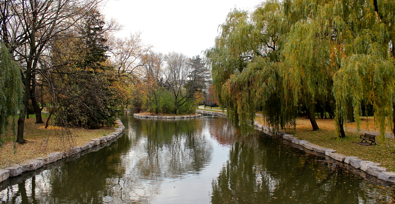 The key natural feature and indisputable jewel of the area is Victoria Park