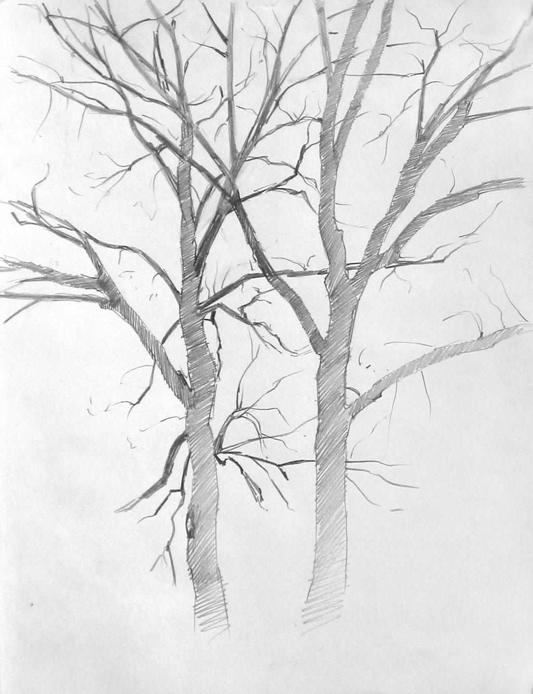 Uwtree