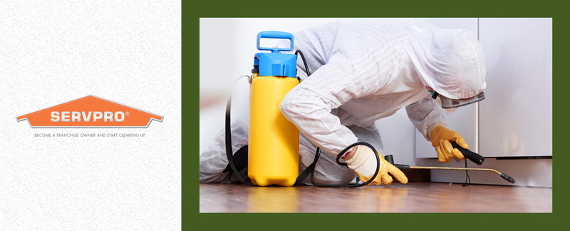 SERVPRO of Arnold/North Jefferson County offers Mold Remediation in Imperial, MO