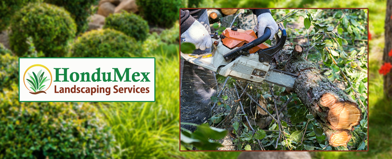HonduMex Landscaping Services, LLC	 Provides Shrub Removal Services in Madison, WI