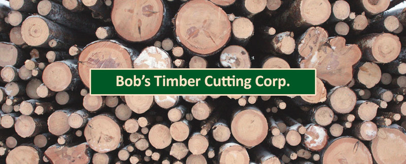 Bob's Timber Cutting Corp. is a Logging Contractor in Oregon City, OR