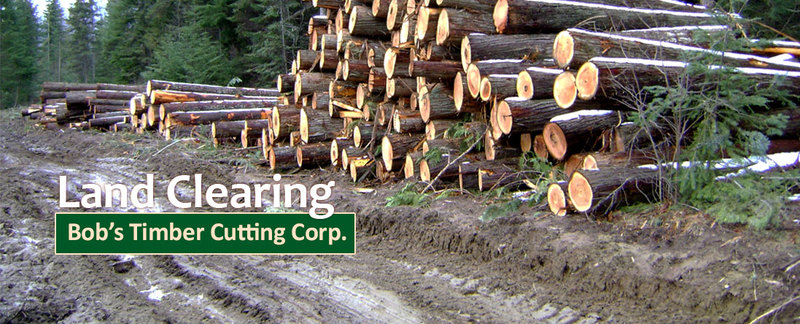 Land Clearing Bob's Timber Cutting Corp., in Oregon City, OR