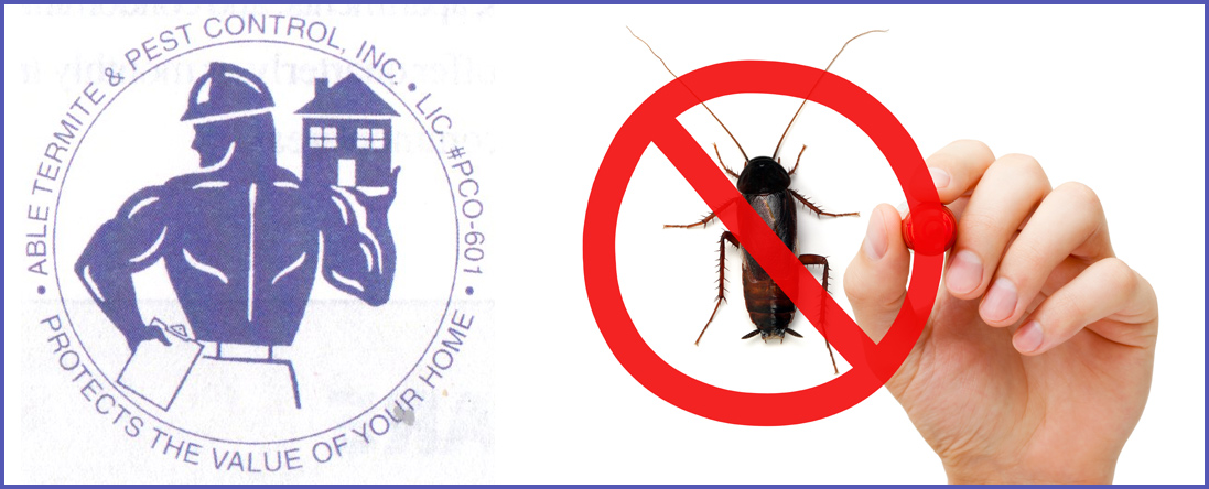 General Pest Control - Mice, Roaches, Ants, Etc.