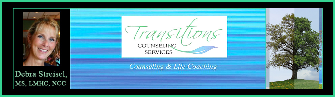 Transitions mental health counseling services header r3