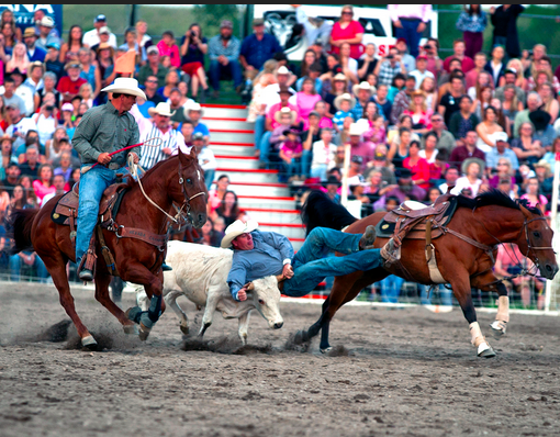 Livingstonrodeo