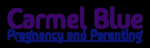 Carmelblue logo