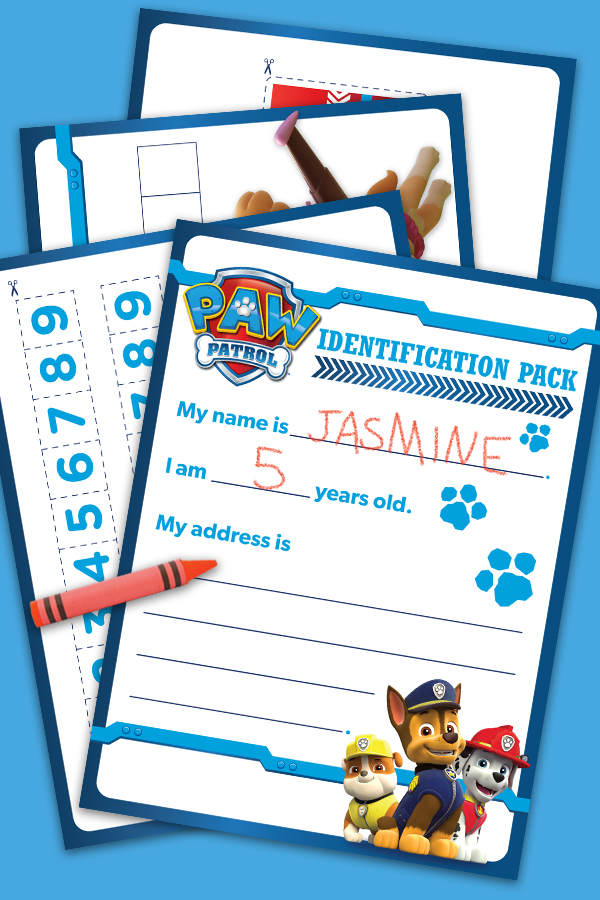PAW Patrol Identification Pack