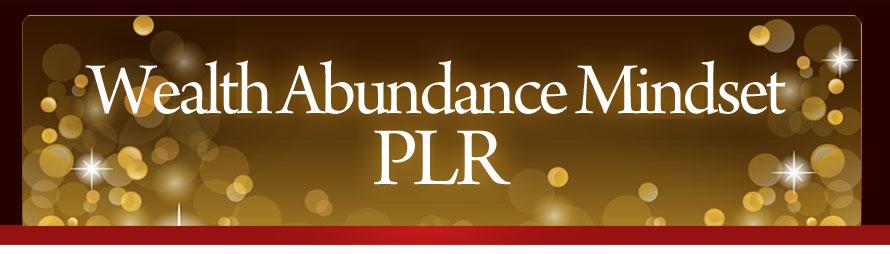 Wealth Abundance Mindset PLR