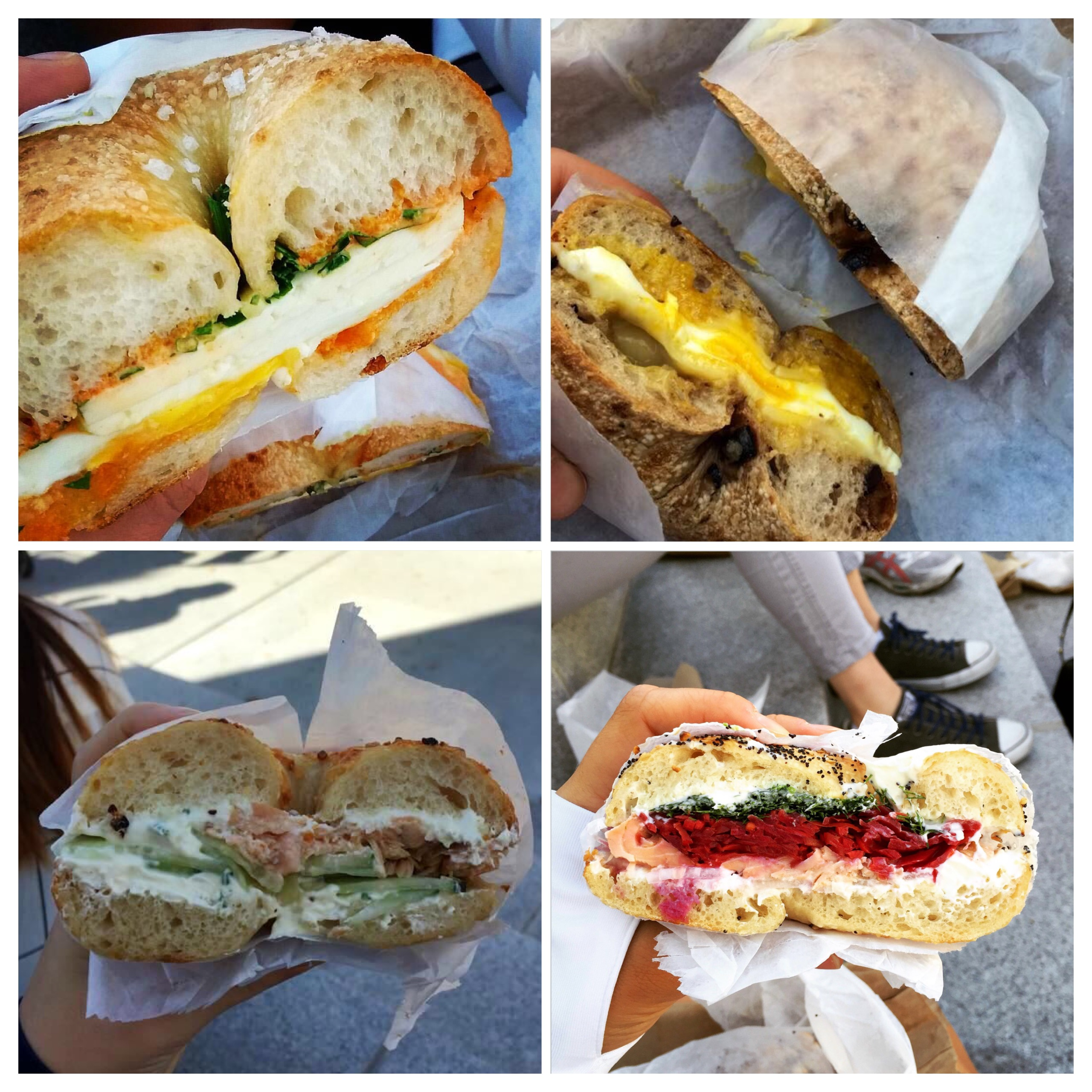 Some of our bagels. Photo courtesy of Stina Stannik, Allie Wainer, Sunny Wang, Ipek Emekli.