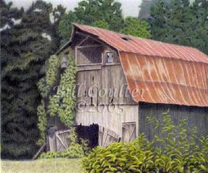 Barn_summer