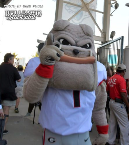 Hairy Dawg is ready for the 2017 Georgia-Florida Dawg Walk