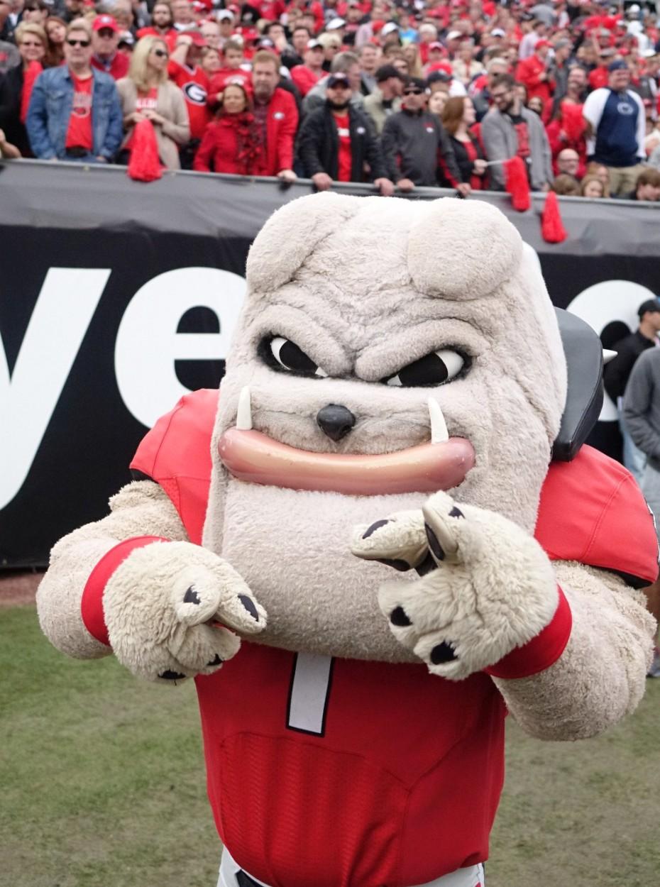 Hairy Dawg - 2nd half of TaxSlayer Bowl 02-JAN-2016 (Photo by Greg Poole)