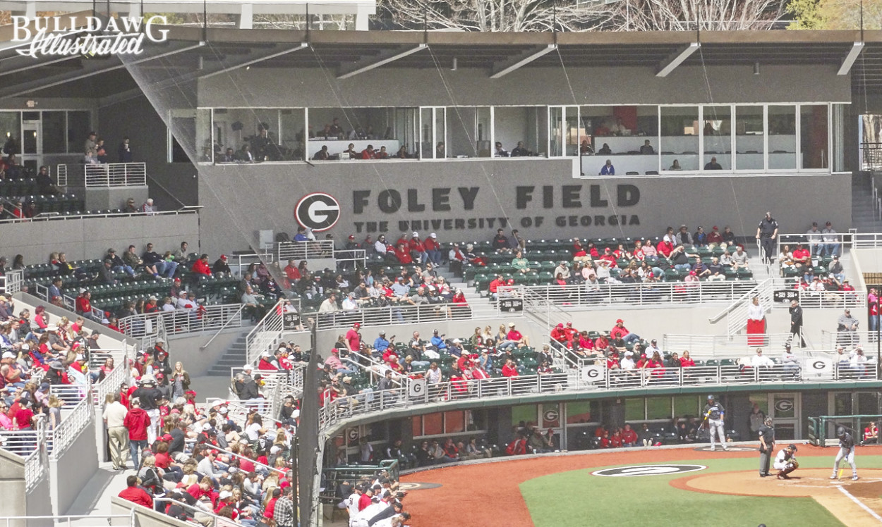 Foley Field from Dantzler's deck