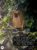 Photostudio_1593782055047