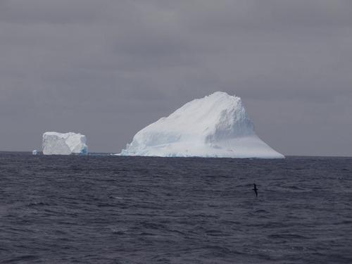 first-iceberg