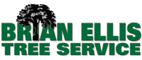 Website for Brian's Tree Service