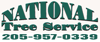 Website for National Tree Service