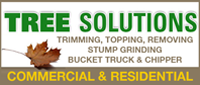 Website for Lawn and Tree Solutions