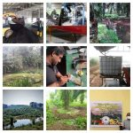 Watawala Plantations re-affirms their persistent drive towards sustainable agriculture in Sri Lanka