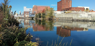Gowanus photo 1 listing