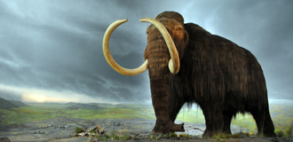 Woolly mammoth listing
