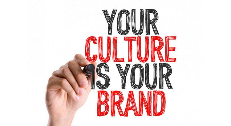 testes fit cultural