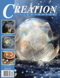 Creation Illustrated, Winter 2020, Vol. 26 No. 4