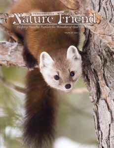 Nature Friend, February 2020, Vol. 38 No. 2