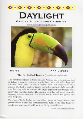 Daylight: Origins Science for Catholics, No. 65, April 2020