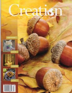 Creation Illustrated, Fall 2020, Vol. 27 No. 3
